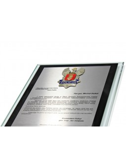 MDX016-S   Medal stalowy - SPORTY WALKI - kolor srebrny R-50mm (seria MDX112)